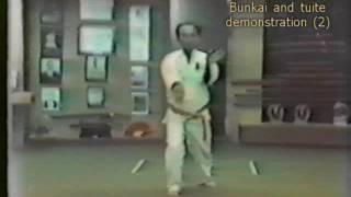 Master Seiyu Oyata - bunkai/tuite demo (2)