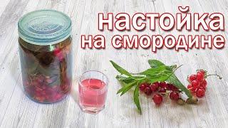 Настойка на Смородине и Самогоне Такого еще не Пробовали Рецепт от канала Свой Среди Своих кулинария