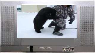 Медведь Жора и Тигрёнок Багира насели на мужика