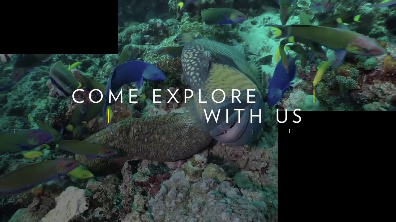 video: Nat Geo Live: Come Explore With Us