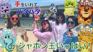 【どうぶつシャボン玉を攻略!】流・バナナ東京がグローブアバブルで遊んでみたところ夢中になりすぎて・・・