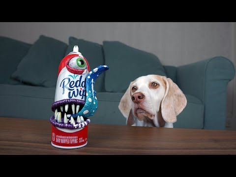 Dogs vs Annoying Whipped Cream Prank! Funny Dogs Maymo & Potpie