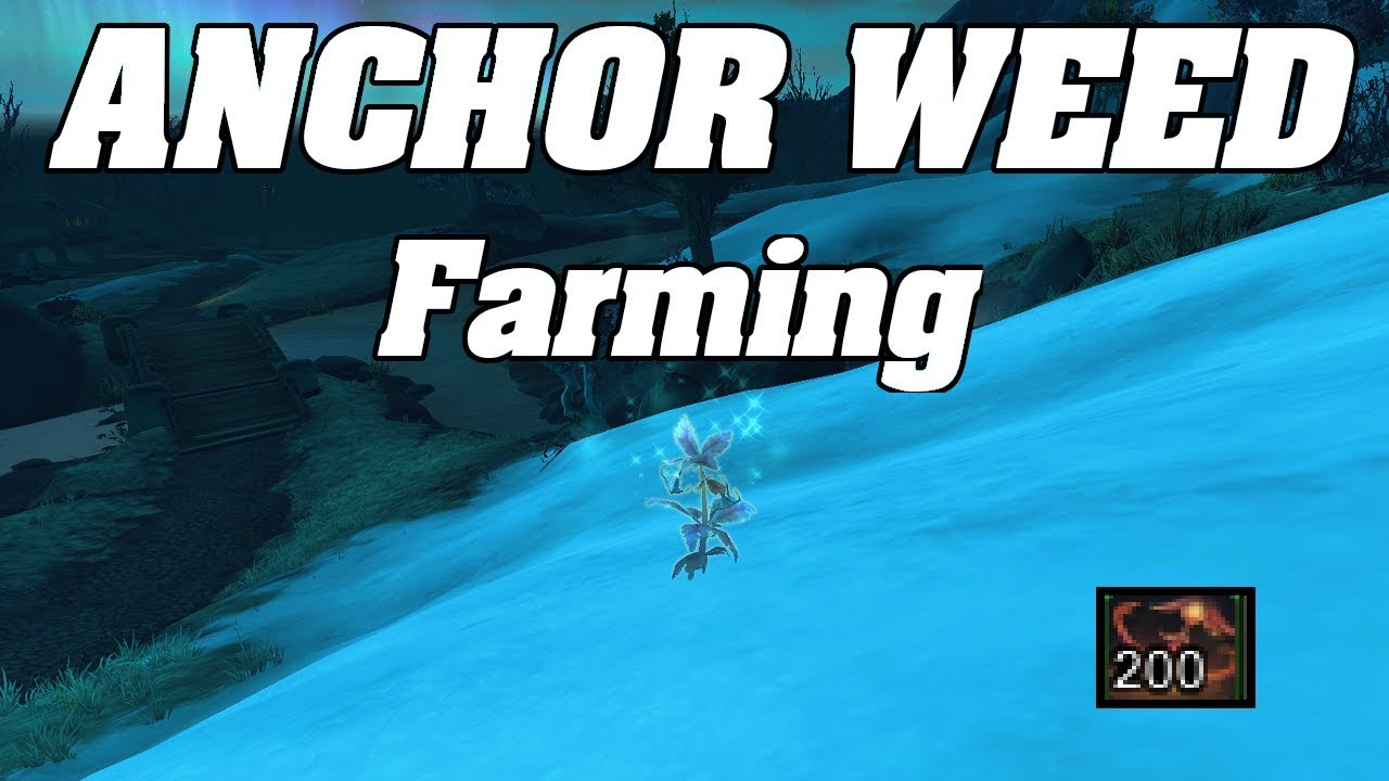 WoW : The BEST Anchor Weed Farm