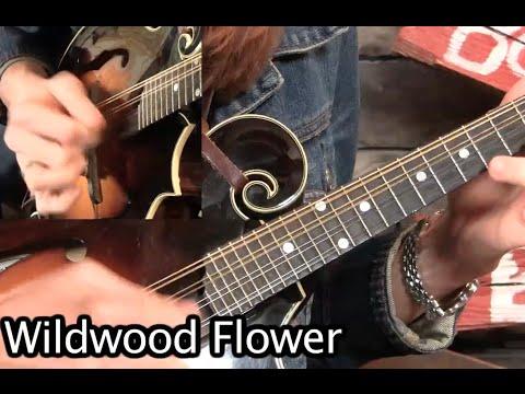 crosspicking of wildwood flower mandolin lesson youtube. Black Bedroom Furniture Sets. Home Design Ideas