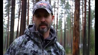 охота на лося со шведской лосиной лайкой