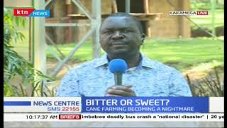 Sugar cane farming becoming a nightmare: Farmers at the mercy of cartels