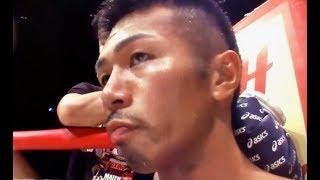 内山高志vs金子大樹【WBAスーパーフェザー級T.M】 thumbnail