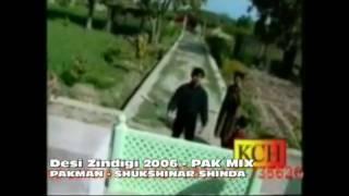 Desi ZIndigi - Pak Mix