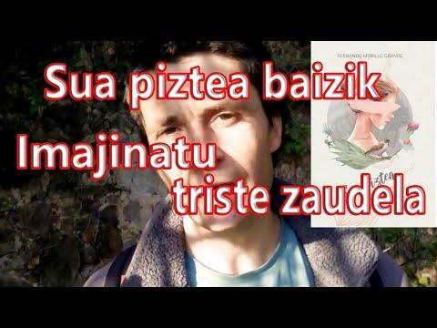 """""""Sua piztea baizik"""". Imajinatu triste zaudela - Fernando Morillo Grande (Sorginetxe istorioak)"""