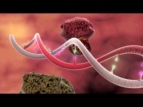 DNA Mutation 3D Animation