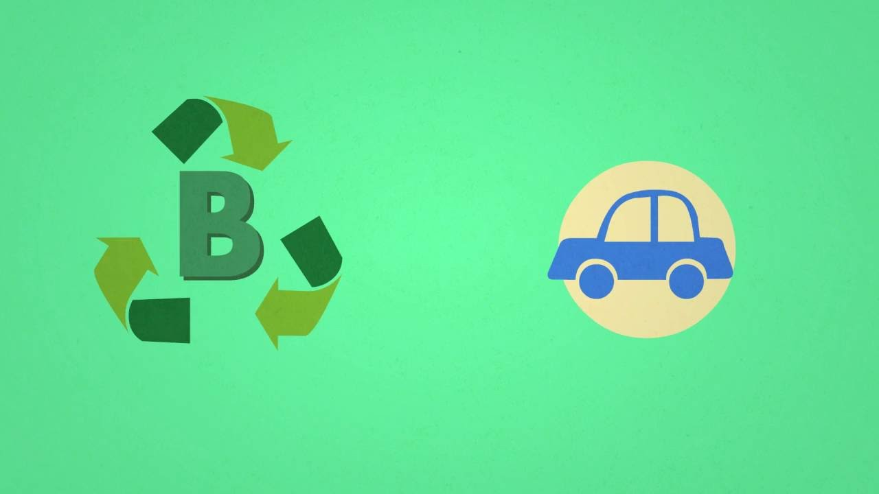 Science in 1 minute: how is biodiesel made?