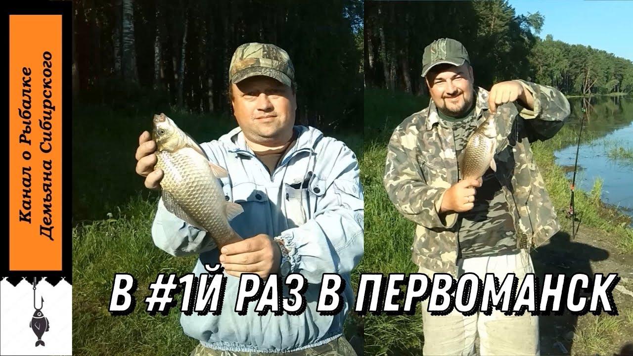 ловля карпа в красноярском крае