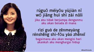 Teresa Teng - Wo Zhi Zai Hu Ni ( I Only Care About You )  Lirik Terjemahan