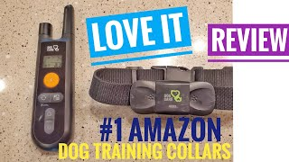 #1 Dog Training Collar on Amazon Review How To
