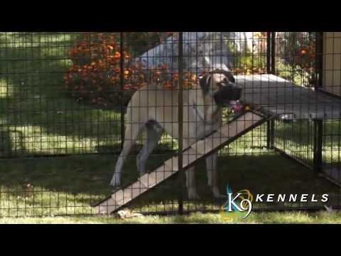 k9-kennel-store-ultimate-dog-den