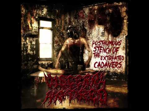 Visceral Hatred - Posthumous Of The Extirpated Cadavers [Full Album Stream]