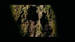 The Beyond (1981) Joe the Plumber Eyeball Scene