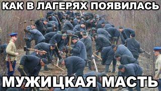 Как в советских лагерях появилась масть мужика. Как появилось название масти
