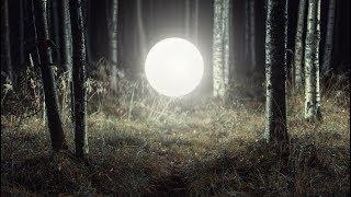 Таинственное видео: Плазмоид, Шаровая молния, НЛО. Что это? Видео. Фото. Видео плазмоида.
