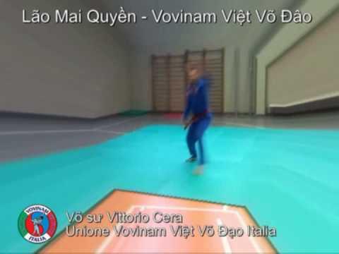 LÃO MAI QUYỀN, Vovinam Việt Võ Đạo Program - NOT OFFICIAL - NOT CORRECT!