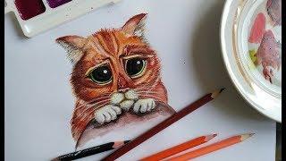 Кот в сапогах! Нарисуем кота из Шрека пошагово. Урок рисования