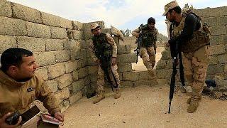 Ирак и Сирия: год борьбы против террористов ИГИЛ - review