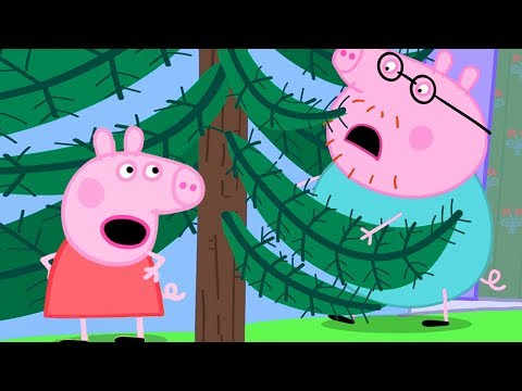 Peppa Pig Official Channel | Daddy Pig is Stuck in a Tree. Help... Peppa Pig