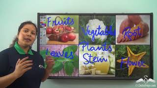 Edible parts of a Plant