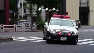 【警察】タイヤを鳴らしながら違反タクシーを追うパトカー