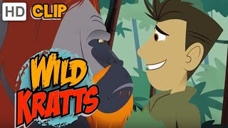 Wild Kratts - Orangutan Approved