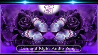 சின்னஞ்சிறு கல்லு வெச்ச மூக்குத்தி Left and Right Echo Songs
