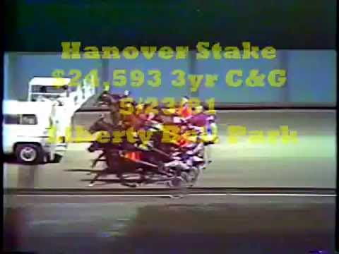 1981 Liberty Bell Park ARTIES DREAM Hanover Stake Shelly Goudreau