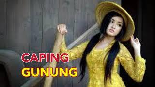 Gambar cover Caping Gunung - CAMPURSARI New Pallapa TERBARU