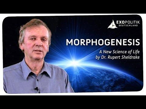 Rupert Sheldrake: Morphogenesis - A New Science of Life