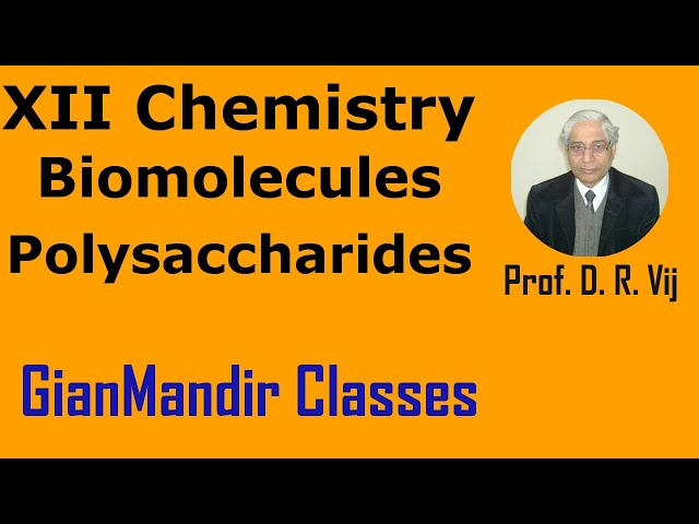 XII Chemistry | Biomolecules | Polysaccharides by Gourav Sir