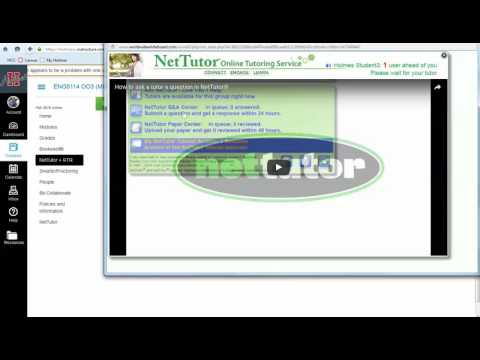 NetTutor + RTR Video