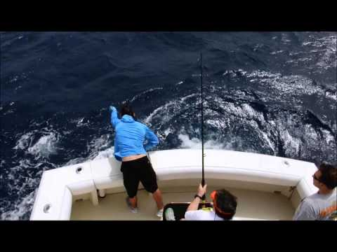 Bluepoint Maritime Fishing Trip