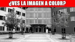 MIRA LA IMAGEN 15 SEGUNDOS Y LA VERAS A COLOR | FoolBox TV | Acertijos Visuales Ilusiones Ópticas