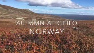 Autumn at Geilo Norway
