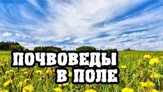видео Нитрагин как почвенный тип удобрения
