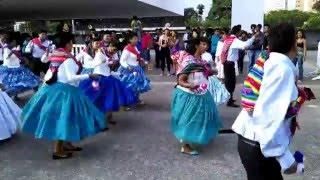 carnaval boliviano en sao paulo brasil 2016 moseñada