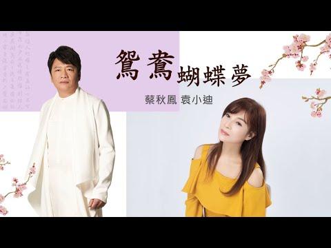 鴛鴦蝴蝶夢 蔡秋鳳+袁小迪