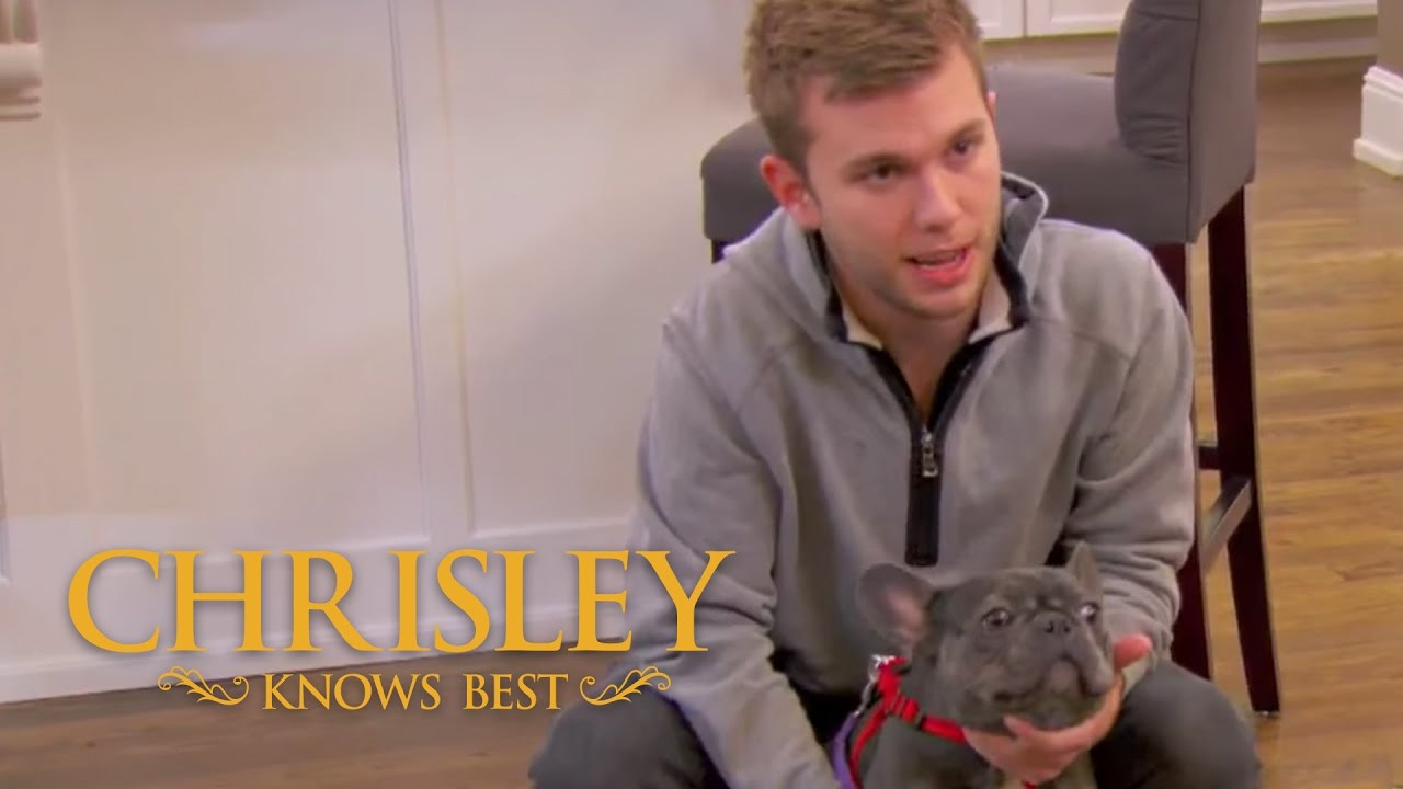 Download Season 5, Episode 3: 'Todd Meets Chase's Dog' | Chrisley Knows Best