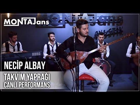 Necip ALBAY - Takvim Yaprağı  | Canlı Performans