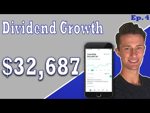 Revealing My $32k Robinhood Portfolio | Total Dividend Income In 2019