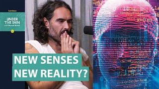 New Senses, New Reality? | Russell Brand & Neuroscientist David Eagleman