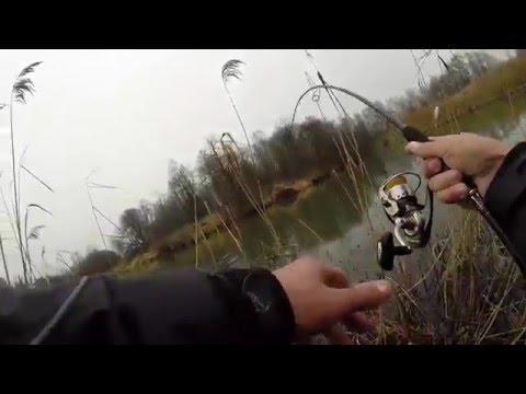 Осенняя ловля на джиг (техника и тактика ловли)