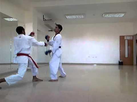 karate vs taekwondo - YouTube