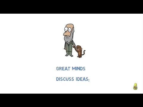 Eleanor Roosevelt on small minds vs big minds (quote)