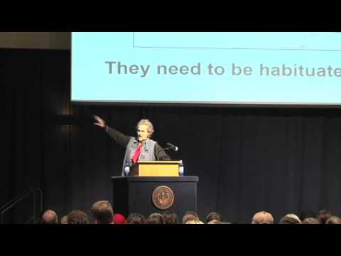 Temple Grandin Low Stress Animal Handling